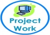 php coding, project guidance, development, module, programming,