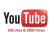 provide real 500 likes and 5000 view for any YouTube video in EXPRESS delivery just