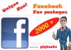 give you 2000+ Unique,Real,Top quality Guranteed Facebook Likes