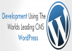 design responsive wordpress website for your business or company with full seo optimization
