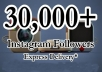 add DammQuick 30,000+ Instagram Followers To Your Instagram Account [No Unfollow] [No Eggs] Only for $5