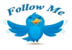 send you 1200+ real Human and Active USA twitter followers to your twitter page without password in 48 hours, {No eggs, No boots}