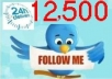 add you 1000+++ real usa twitter followers to your twittter profile who are active twitter followers without password in 40 hours