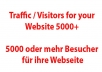 send you traffic to your website, 5000 visitors