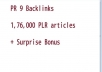manually create 12 unique Pr 9 backlinks + 1,76,000 PLR articles+ surprise bonus