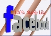 provide 1000+ Real and Genuine USA Likes to your Facebook fanpage within 24 hours