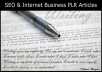 provide 1,038 Internet Business PLR Articles