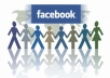 provide 104+ facebook usa or uk likes your fanpage with in 2 hours