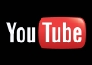 deliver 3000 youtube views 50 subs and 30 likes to your video