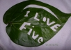 give Attractive to your message on the Natural Leaf