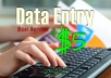 complete any type of Data Entry work -3Days-