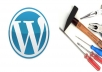 tweak/solve any kind of html/css problem of your wordpress site/blog