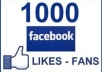 give you 1000+ Facebook likes to your fanpages, likes within 48 hour
