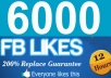 Give you 6000+ Real Facebook Likes/Fans