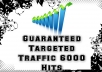 provide 6000 unique hits to your website