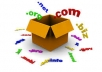 secure your website, domain registration and webspace