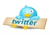 deliver 300 new USA twitter followers, within 24 hours