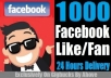 Give You 1000+ Facebook FANS / LIKE In Your Page Within Few Hours