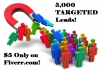 advertise anything to 5,000 TARGETED leads