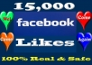 Add 10,000 to 13000 Facebook POST/ PHOTO/ COMMENT likes OR 25000 Facebook follower