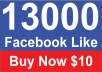 Give you 13,000 Real Active People Facebook Likes