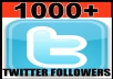 Give You 1000+PERMANANT Twitter Followers Within 4 Hours