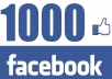 give you 500 REAL Fans to your Facebook fanpage