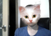 add effects to your webcam
