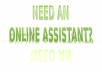 do VIRTUAL ASSISTANT work