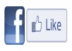 provide you with 2000+ Facebook Fan Likes