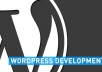 customize,install,modify or fix your WordPress Blog / Site