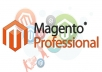I will install Magento for you only