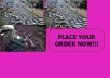 blast You Unlimited GUARANTEED Real User Traffic To Your Website