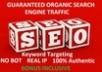 do 20,000+ high quality Backlinks+pings and guarantee you 10,000++ real organic human TRAFFIC