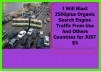 Blast 2500plus Organic Search Engine Traffic From Usa And Others Countries