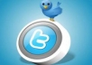 tell you a website where you can get limitless twitter followers