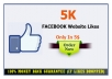 give 5000+ FACEBOOK Website Likes