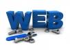 help you with your Web Developing question