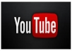 provide 500 youtube subscribe or 1000 youtube like or 100 youtube comments or 100 facebook comments