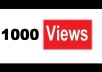 give you 1000 Youtube Views