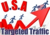 give 1000 Real Human TARGETED Traffic From Usa Or Other Country