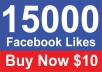 Give you 15,000 Real Active People Facebook Likes