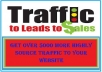 Provide Genuine Over 5000 Web Traffic from HIGHLY Source to your Website