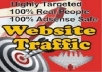 drive Over 1,750,000 Real USA Highly Source Targeted Website Traffic To Your Site