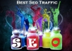 send you 2600 Guaranteed Organic Search Engines Traffic