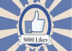 send 5000 Plus Real FACEBOOK Likes On Your FanPage in less than 16 hours