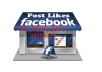 give 1100 Facebook Photo Likes or Post Likes mostly USA