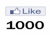 Provide 1000+ Real look FACEBOOK Likes to your fan page without admin access