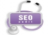 audit your website and give you an A to Z SEO optimization report