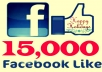 Get you 15,000 Facebook Fans or Likes